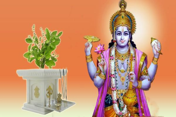 by this method tulsi will be worshiped