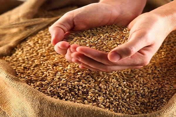 government can increase the minimum support price of grain