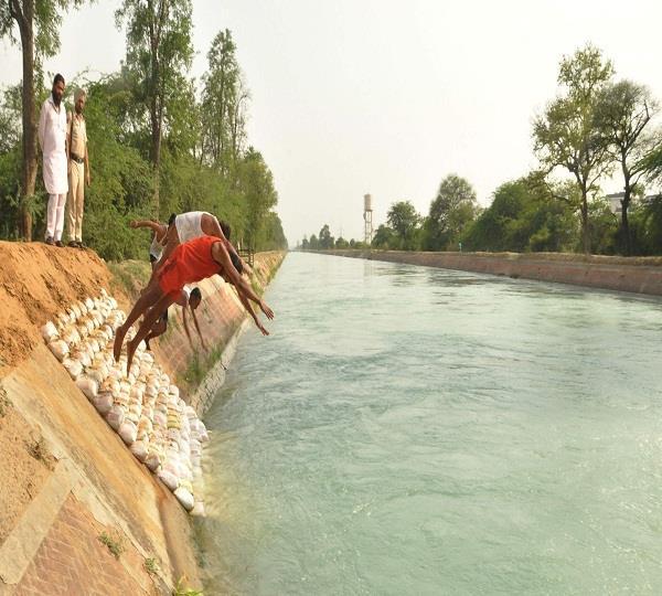 bhakra dam suicide