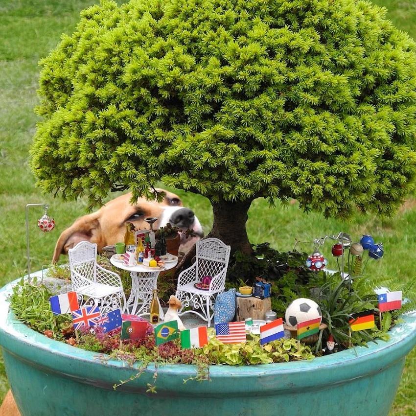 मिनिएचर गार्डन से दें घर को Creative look
