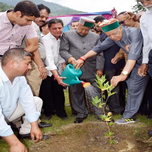cm virbhadra said 1 33 crore medicinal plants planted in 4 years