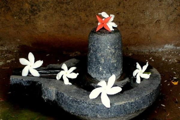 sawan keep meditation in shivling poojan