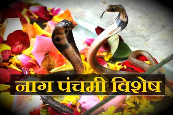 nag panchami learn history with legend