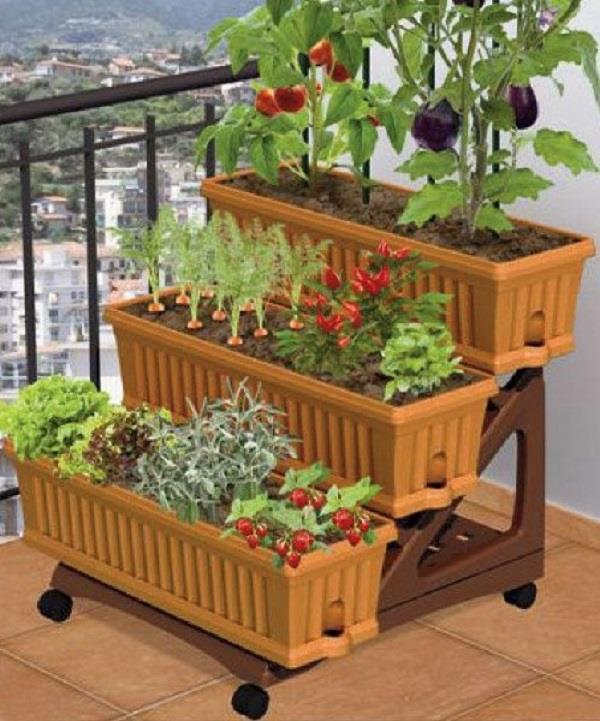 अपने किचन गार्डन में उगाएं ये चीजें
