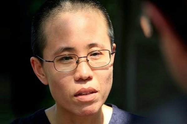 australia urges china to release dissident liu xiaobo widow