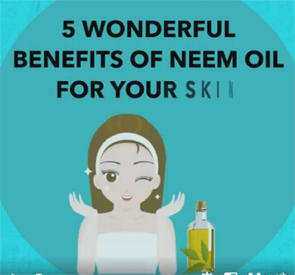 5 wonderful benefits of neem oil for your skin