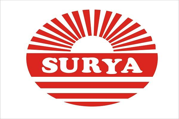 surya company s fan will survive 60 percent electricity