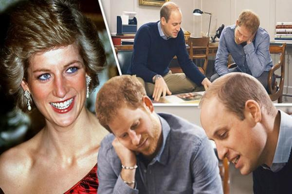 prince william and prince harry regret their last call with princess diana