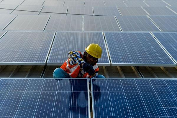 india emerging as front runner in fight against climate change