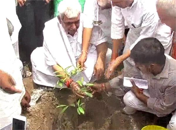 minister said neem tree plantation earn 50 thousand