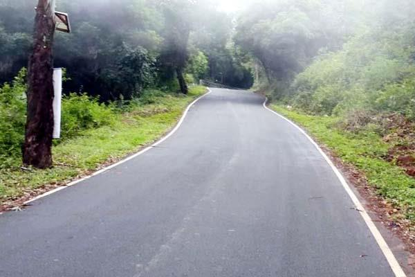 forest clearance for 374 roads of himachal