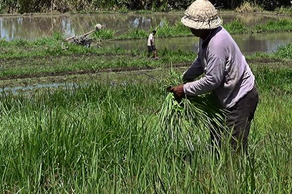 agriculture department can spend on cce 30 million