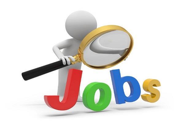 saudi arabia  jobs  company