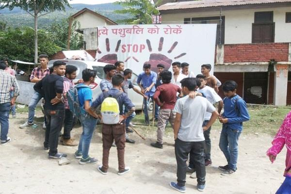 college in run fiercely sfi and abvp kick punches