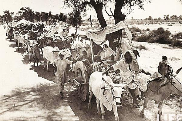 tragedy of partition of india