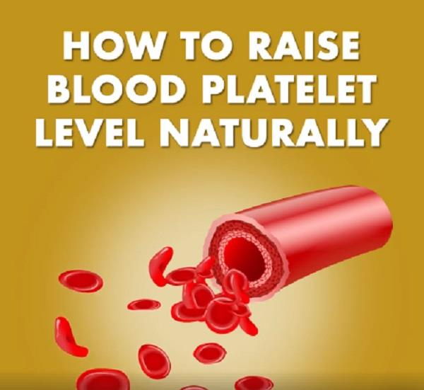 increase in these natural ways blood platelets in the body