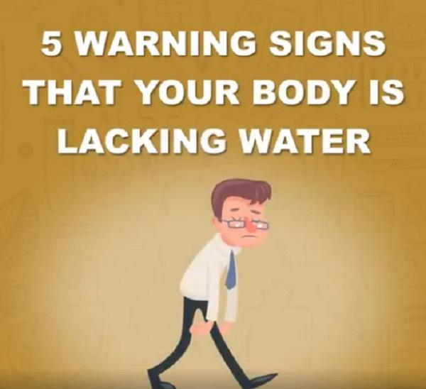these signs appear in the body when there is water shortage