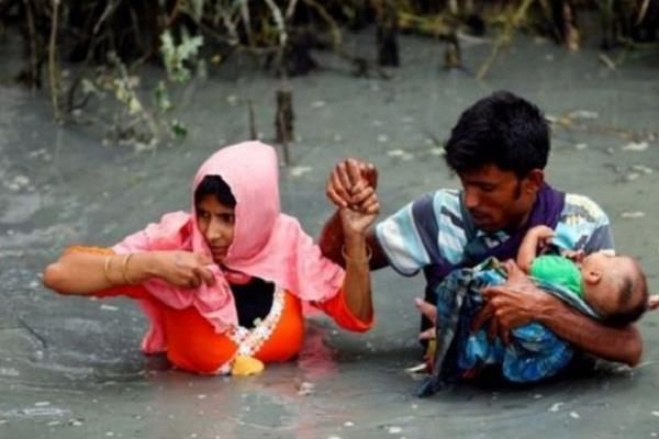 central government  rohingya  court  prashant bhushan