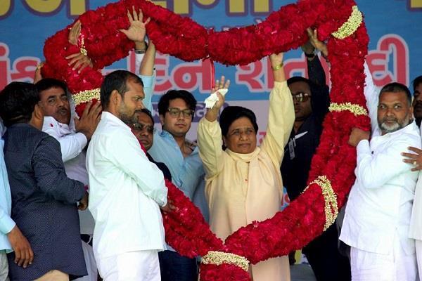 bsp will fight all seats in gujarat mayawati