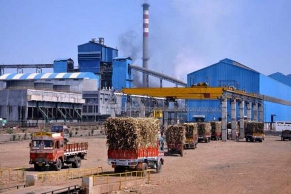 remote chip found in the ear corner of the sugar mill
