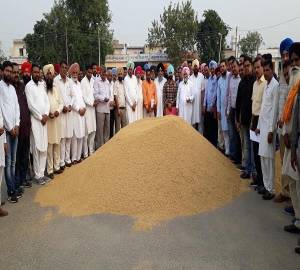 jagraon starts procurement of paddy