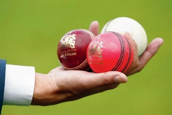 Sports crickets news in hindi