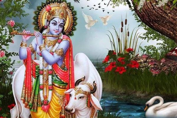 birth certificate of krishna sought under rti mathura administration