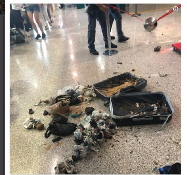 italian police blow up suspicious suitcase containing coconut