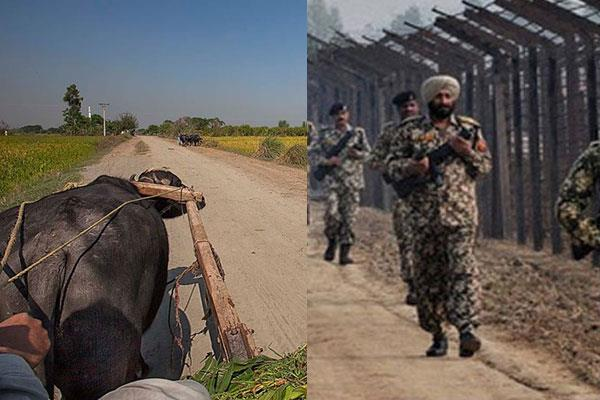 border is used on carriage and bicycle on drug smuggling