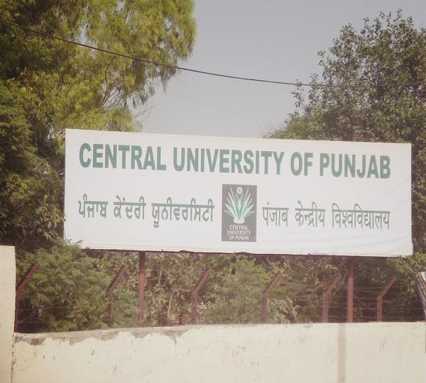 punjab central university
