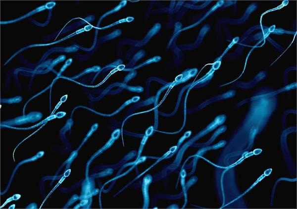 human race may face extinction as sperm quality continues to fall in