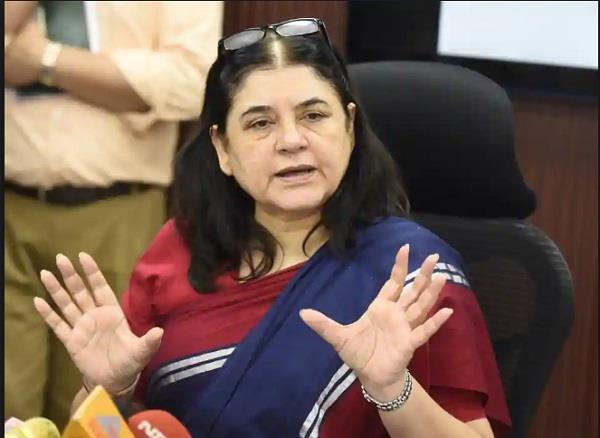 the pain of maneka s pain nothing hidden when not getting place in the cabinet