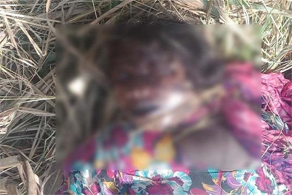 woman alley corpse found in sugarcane farm