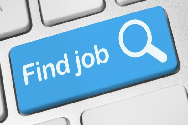 dlw  job salary candidate
