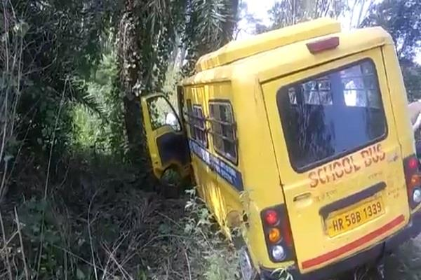 school van collided with tree inadvertently
