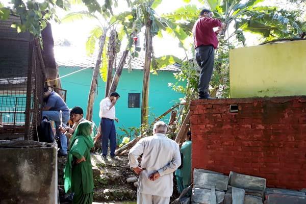 dengue in 3 panchayat of jaisinghpur