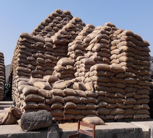 650 gates of looted wheat