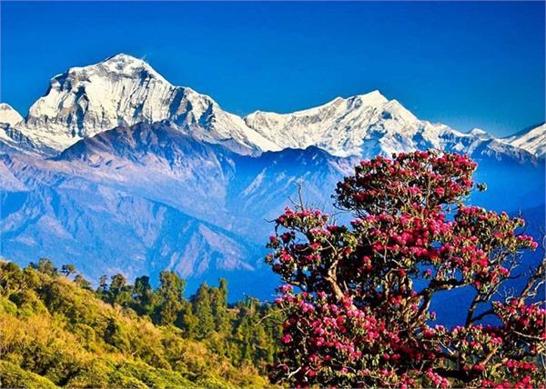 भूटान जाने के लिए भारत के इस गांव से लेनी पड़ती है एंट्री, स्वर्ग से भी है सुदंर
