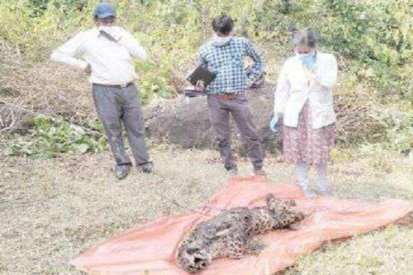 death of mother tongua in suspicious condition found dead in forest