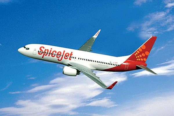 spicejet will start 6 new flights only 3 559 tickets can be booked here