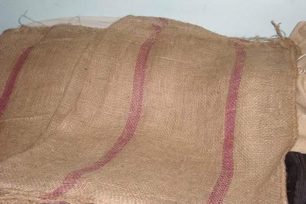 government made mandatory use of jute bags for 100 grain packaging