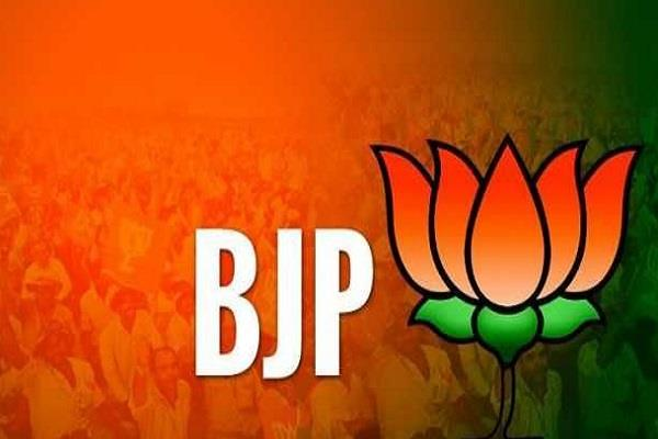 mp election bjp has fielded only 16 out of 177 contestants