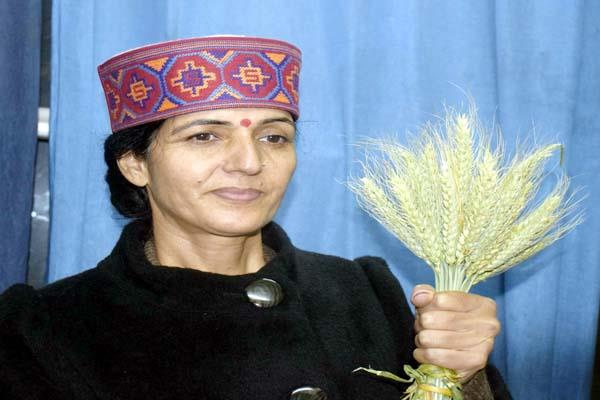 woman of kullu did great experiment in farming