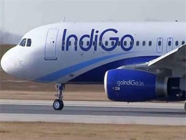 indigo s worst service air india best in travel related policy