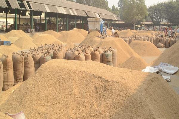 so far 281 lakh tonnes of paddy has been procured in the country