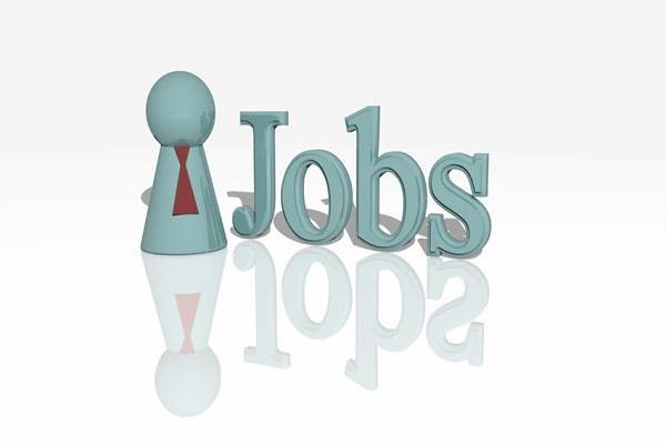ndmc jobs  salary candidate