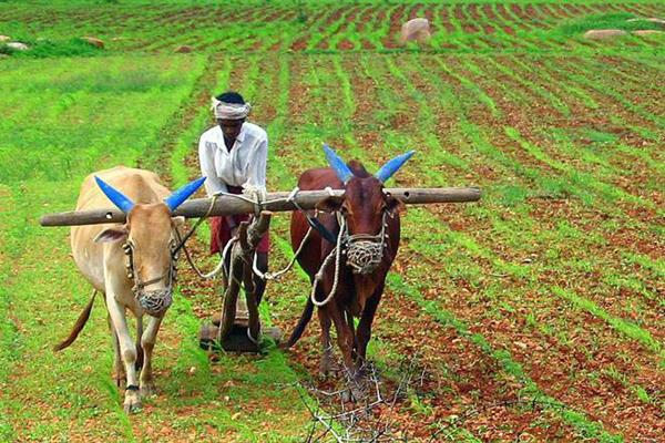 release of package for farmers before general elections