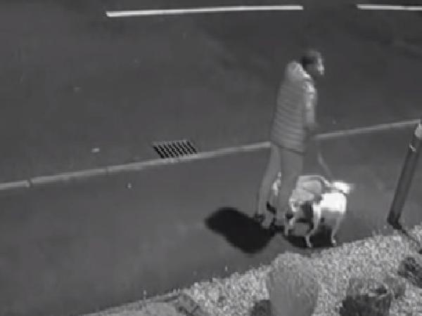 uk man abandons dog on roadside cctv footage viral