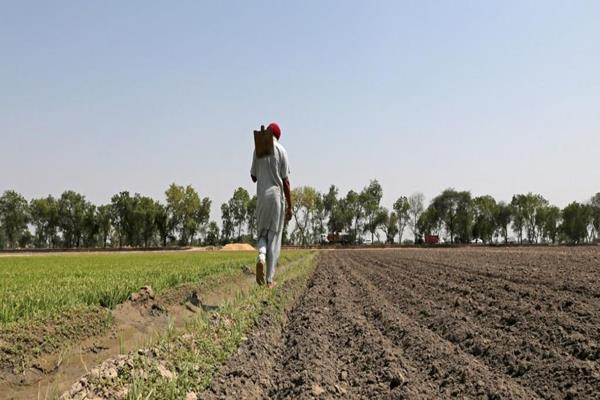 punjab gave relief of rs 1 771 crore to farmers in four districts