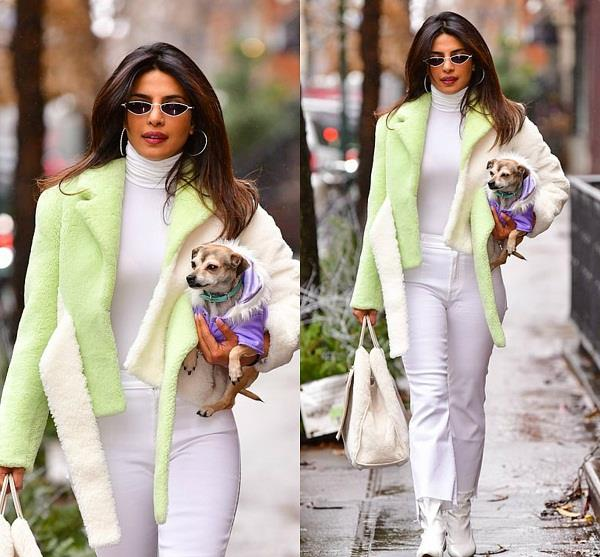 priyanka chopra is seen back in newyork